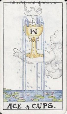 Học bói bài Tarot: Bốn Lá Ace Trong Tarot