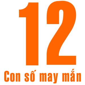 so-12