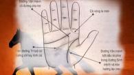 Bói chỉ tay có quý nhân phù trợ