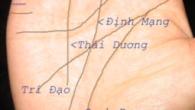 xem-chi-tay-luan-tuong-lai