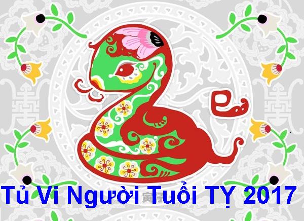 tu-vi-tuoi-ty-2017